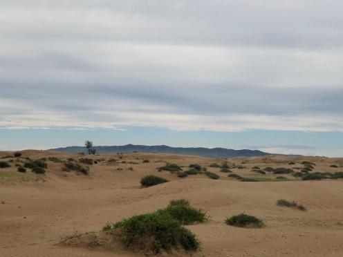Mongol Els sand dunes